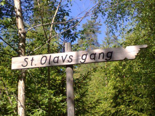 St. Olavsgangen – 7. klasse ved Vesterskaun Skole vedlikeholder stien